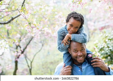 A new york city, park in the spring. Sunshine and cherry blossom. A father giving his son a ride on his shoulders.