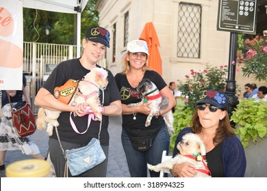 NEW YORK CITY - SEPTEMBER 20 2015: Adoptapalooza in Union Square Park brought numerous animal rescue organizations together under the big tent of the Mayor's Alliance for NYC Animals.