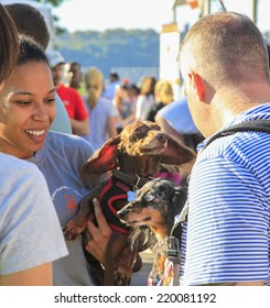NEW YORK CITY - SEPTEMBER 27 2014: Best Friends Animal Society hosted its annual Strut Your Mutt walk & fundraiser along West Side Hwy followed by an adoption fair on Pier 84. Dachshunds with owners