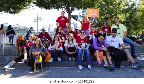 NEW YORK CITY - SEPTEMBER 28 2013: Bestfriends, an animal rescue organization based throughout the US, held its 18th annual fundraising Strut Your Mutt walkathon September 28 2013 in New York City