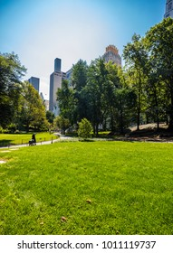 New York City, United States - August 24, 2017: Central Park, in summer.