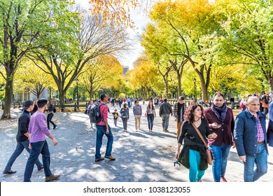 New York City, USA - October 28, 2017: Manhattan NYC Central park with people walking on street alley, benches in autumn fall season with yellow vibrant saturated foliage trees, sitting on benches