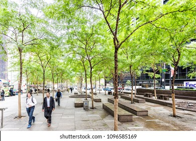 New York City, USA - October 30, 2017: NYC Manhattan lower financial district downtown, NYSE, green trees in Zuccotti Park, holiday illuminated lights for Halloween