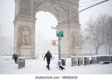 NEW YORK - FEB 9: A dog owner walks his dog near the Washington Square Arch on February 9, 2017 in New York. Snowfall totals of approximately six inches fell in and around NYC.