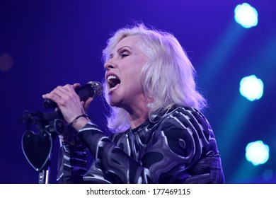 NEW YORK - February 5, 2014: Debbie Harry of Blondie performs during the Bringing Human Rights Home concert on February 5, 2014 in Brooklyn, New York.