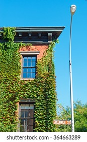 New York: a house covered in ivy in Greenwich Village on September 15, 2014. Greenwich Village, referred to by locals as simply The Village, is a neighborhood on the west side of Lower Manhattan