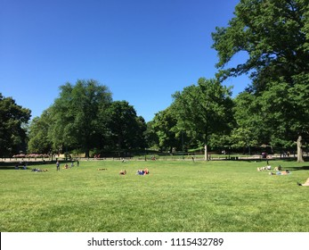 NEW YORK - JUNE 12, 2018: People in Central park on sunny day in Manhattan with buildings in background.