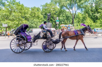 NEW YORK - JUNE 14, 2013: Beautiful horse carriage in Central Park. Horse carriage is one of the favourite way for tourists to visit the park.