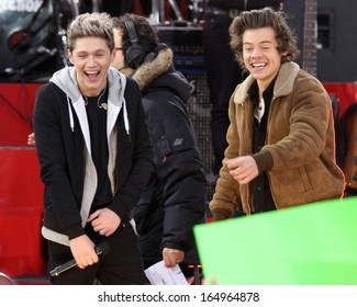 NEW YORK - NOV 26: Niall Horan and Harry Styles of One Direction perform on 'Good Morning America' in Central Park on November 26, 2013 in New York City.