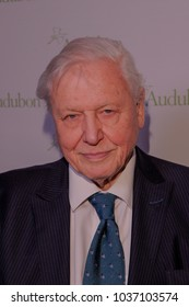 NEW YORK, NY - MARCH 1: Sir David Attenborough attends the National Audubon Society Annual Gala at The Rainbow Room at 30 Rockefeller Plaza on March 1, 2018 in New York City.