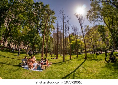 New York NY USA-May 14, 2021 Visitors to Madison Square Park in New York relax maskless amidst the dead trees of Maya Lins Ghost Forest installation