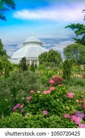 New York, NY/USA - 7/18/17: The New York Botanical Garden