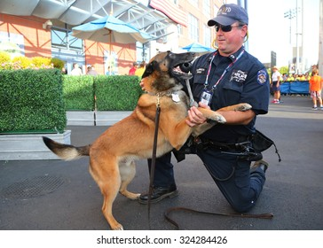 NEW YORK - SEPTEMBER 6, 2015: NYPD transit bureau K-9 police officer and Belgian Shepherd K-9 Wyatt providing security at National Tennis Center during US Open 2015 in New York