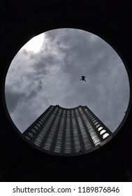 New York skycrapper inside of circle with a bird in the middle
