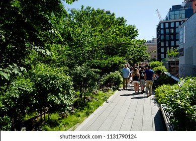 NEW YORK, UNITED STATES, JUNE 16, 2018: outdoor sunny day at High Line Park of Chelsea, Manhattan, in New York.