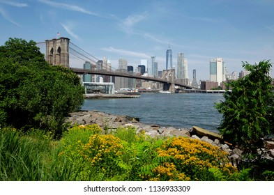 NEW YORK, UNITED STATES, JUNE 18, 2018: Brooklyn bridge and Manhattan skyline seen from the Brooklyn park, in New York.