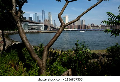 NEW YORK, UNITED STATES, JUNE 18, 2018: Brooklyn bridge and Manhattan skyline seen trough the trees of the Brooklyn park, in New York.