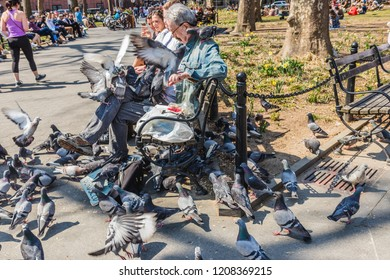 NEW YORK, USA - APRIL 14, 2018: An elderly man feeding pigeons in a park near with the West Village in New York. Man is feeding a flock of pigeons in NYC.