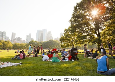 New York, New York, USA - July 10, 2011: People enjoying a beautiful summer day in Sheep Meadow, Central Park. The sun shines through the trees in the late afternoon.
