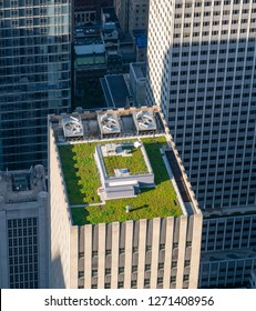 New York, USA - May 22, 2018: Green roof of a skyscraper in New York City. It is a roof covered with vegetation designed to offer environmental benefits.