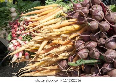 New York / USA - November 5 2017: View of fresh vegetables in the farmer's market