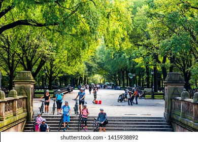 NEW YORK, USA - September 26, 2018: CENTRAL PARK. Central Park is an urban park in Manhattan. Popular destination for tourists. New York City, USA.