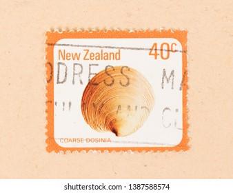 NEW ZEALAND - CIRCA 1980: A stamp printed in New Zealand shows a shell (Coarse Dosinia), circa 1980