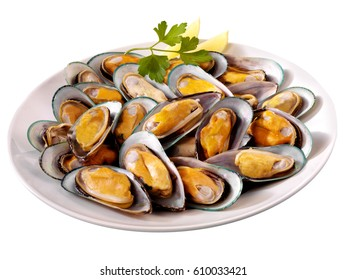 NEW ZEALAND GREEN MUSSELS CUT OUT