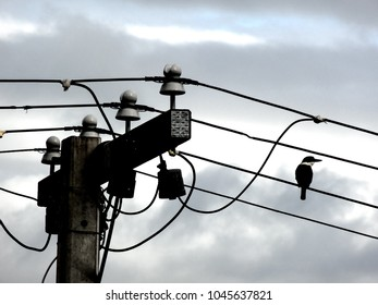 Miraculous Similar Images Stock Photos Vectors Of Telephone Pole Against Wiring Digital Resources Funapmognl