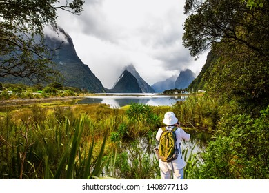 New Zealand is a magical land. Swampy, shallow coast of the fjord Milford Sound. Elderly woman with backpack photographs picturesque landscape. Concept of photographic, exotic and active tourism