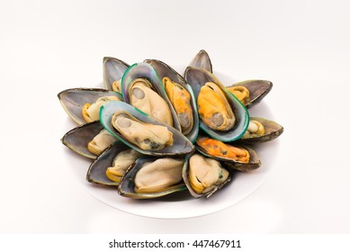 New zealand mussels white background.