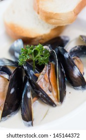 new zealand Mussels in white cream sauce