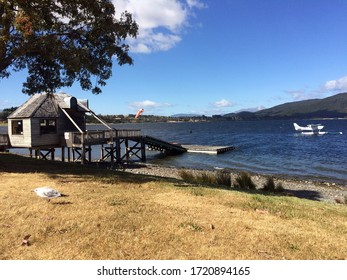 New Zealand nature Te Anau lake view with a bird, wooden structure and seaplane