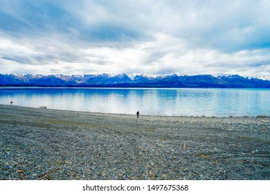 New Zealand, South island, beautiful Lake Tekapo with snow capped mountains in the background