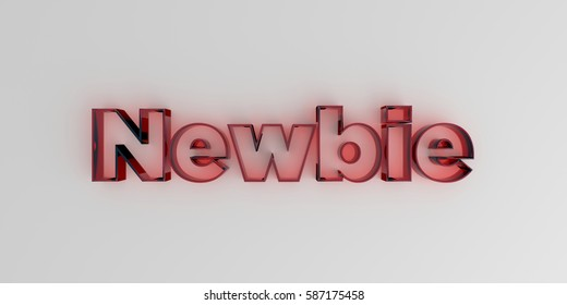 Newbie - Red glass text on white background - 3D rendered royalty free stock image.