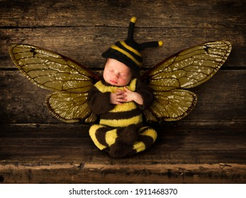 Newborn adorable baby boy in bee outfit sleeping on an old wooden shelf