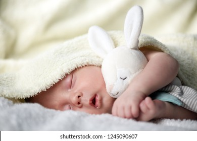 Newborn baby boy with rabbit toy on white carpet closeup. Motherhood and new life concept