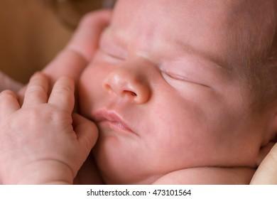 Newborn - baby, face close-up (shallow depth of field)