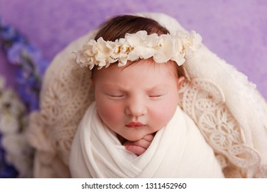 Newborn baby girl, 12 days old, studio session.
