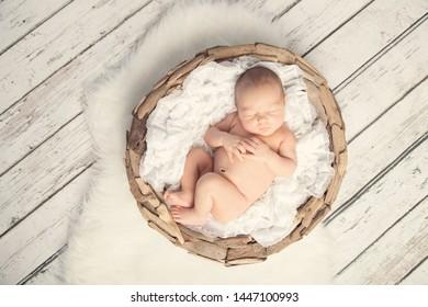 Newborn baby girl sleeping in basket on white wood floor and fur