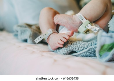 Newborn baby in the hospital