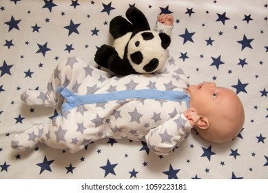 A newborn baby lies in his crib with toy panda, top view