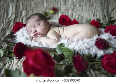 Newborn Baby lying on a fur blanket inside a rustic wooden bowl surrounded by red roses
