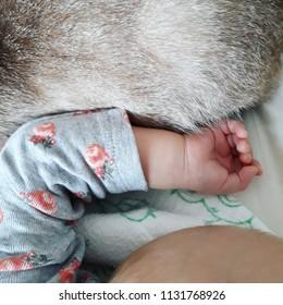 Newborn baby and pet