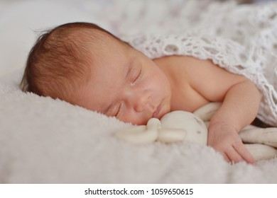 Newborn baby is sleeping with a soft toy