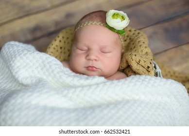 newborn girl with a flower on her head sleeping on a pillow