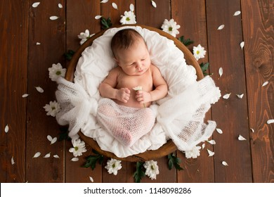Newborn girl on a brown background with daisy flowers. Photoshoot for the newborn. 7 days from birth. A portrait of a beautiful, seven day old, newborn baby girl