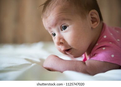 Newborn lying on stomach trying to hold her head