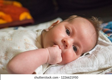 The newborn (one month old baby) lying on the bed