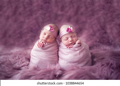 Newborn twins sisters like potato or egg